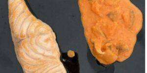 Salmón en salsa de setas receta (1)